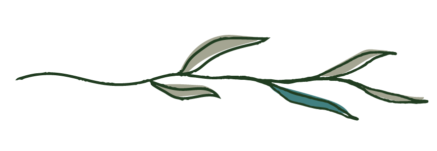 Illustration: Green branch with green leaves